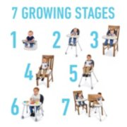 7 growing stages image number 1