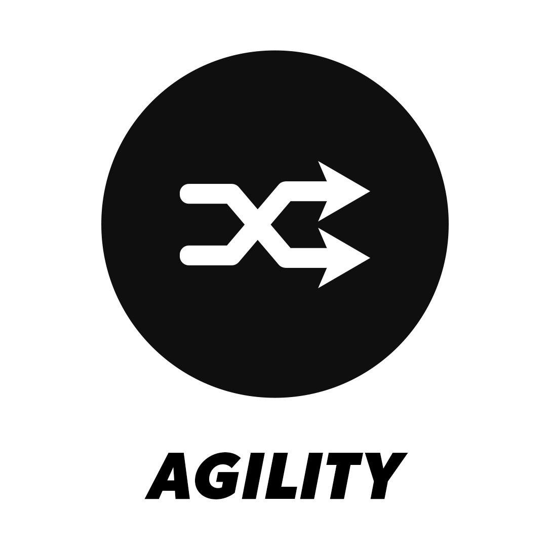 agility graphic